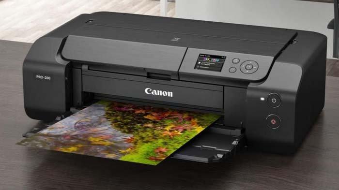 Hasil Gambar Setajam Silet, Canon PIXMA PRO-200 Bikin Cuan Usaha Cetak Fotomu, Segini Harganya!