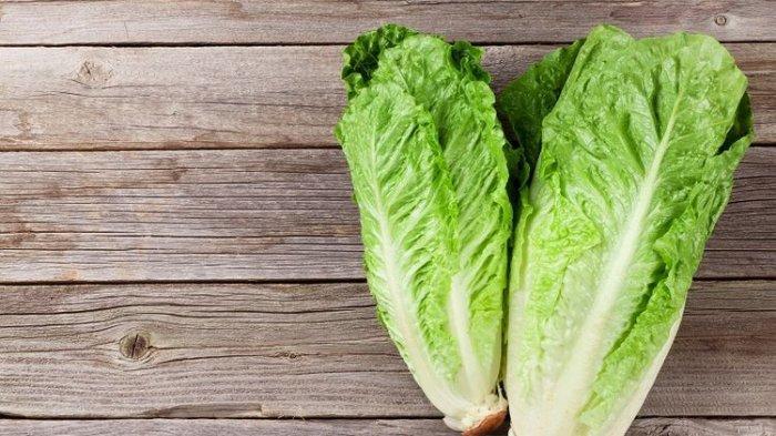 Menu Makanan Sehat untuk Kendalikan Diabetes, Salad Selada Romaine Termasuk: Bisa Jadi Camilan