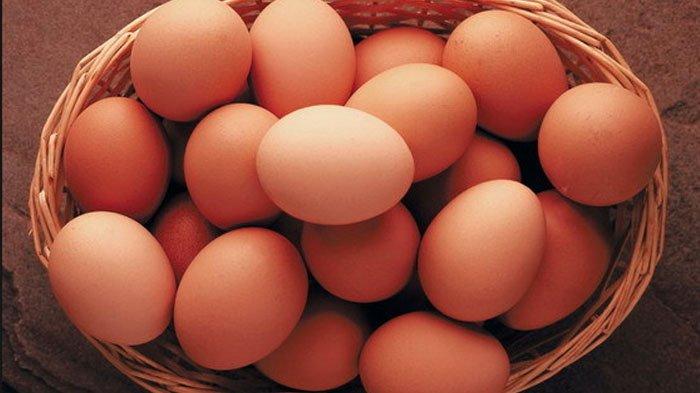 Cara Membedakan Telur Infertil dengan Telur Biasa, Perhatikan Ciri-cirinya, Bahaya Jika Dikonsumsi