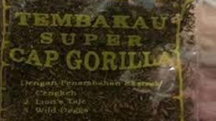Beli Ganja Gorila Sintetis Lewat Instagram, Pemuda 21 Tahun Asal Bogor Dicokok Polres Bangkalan