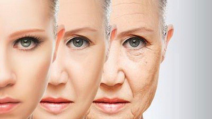 Tips Cantik - 5 Bahan Alami yang Bisa Mengurangi Garis Halus Keriput di Wajah, Dapat Dicoba di Rumah