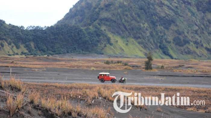 Lindungi Rumput Padang Savana Gunung Bromo, Wakil Ketua MPR RI Usulkan Jalur Wisatawan Dialihkan