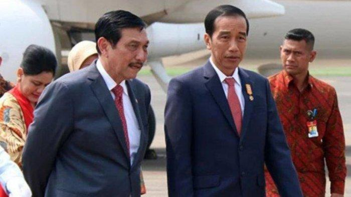 Minta Restu Jadi Ketua Umum PB PASI, Luhut Dapat Jempol Dari Jokowi