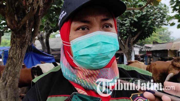 Jumlah Hewan Kurban yang Disembelih di RPH Kota Blitar Naik di Masa PPKM Darurat