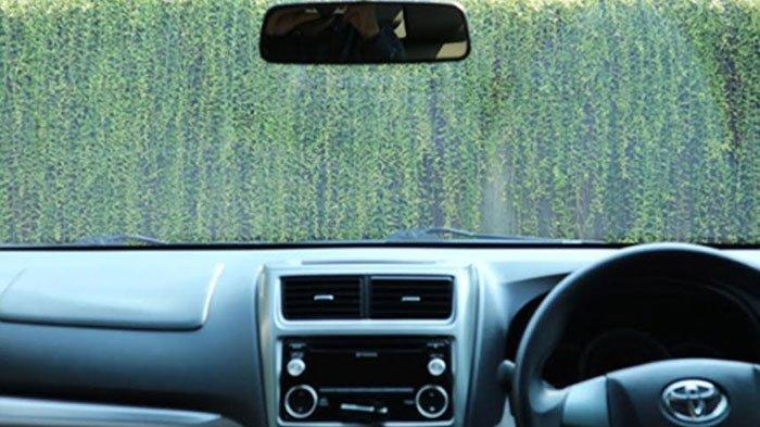 Cara Membersihkan Kaca Film Mobil Dengan Benar, Hindari Pakai Glass Cleaner!