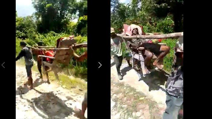 VIRAL Kakek Jombang Ditandu 6 Km Demi Berobat, Divideokan Kepala Desa Sendiri, Cerita Asli Terungkap
