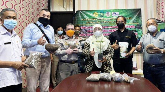 Target Ekspor Porang, Karantina Pertanian Bangkalan Gandeng Pemda Sumenep