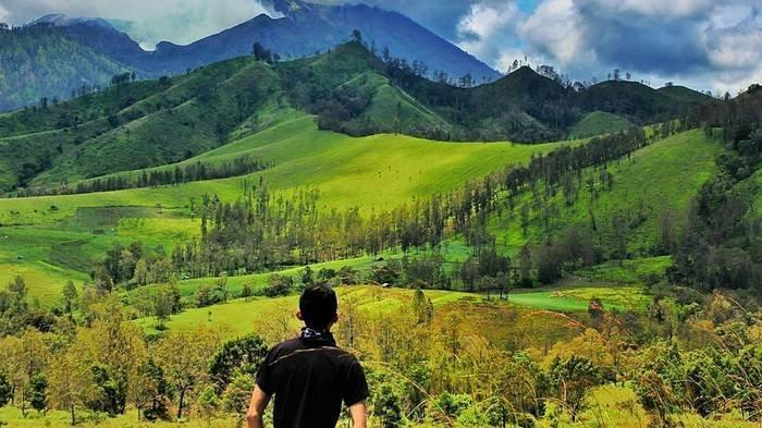 Kawah Wurung terletak di Desa Jampit, Kecamatan Sempol, Kabupaten Bondowoso dan berdekatan dengan Kawah Ijen atau kurang lebih sekitar 9-10 kilometer.