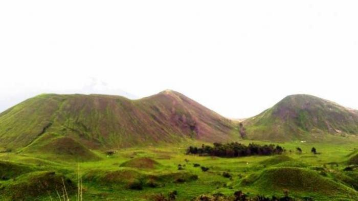 Kawah Wurung, sebuah perbukitan dipenuhi dengan rerumputan hijau, di Desa Jampit, Kecamatan Sempol, Kabupaten Bondowoso, Jawa Timur.