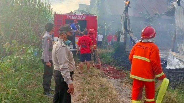 Kebakaran di Kecamatan Ngadiluwih, Kediri, 5500 Ayam Hangus Terbakar Pemilik Merugi Setengah Miliar