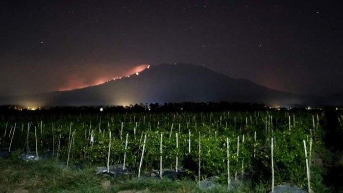Dalam Sepekan, BPBD Sebut Ada 16 Titik Kebakaran di Jawa Timur, Pemprov Berharap Segera Turun Hujan