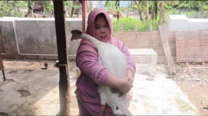 Intip Rumah Kekeyi yang Sederhana di Nganjuk Jawa Timur, Penuh Kandang Hewan: Kursi Santai Mukbang