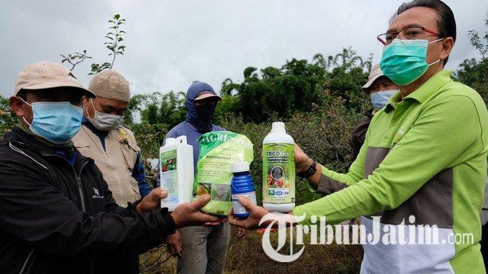 Kepala Dinas Pertanian Kota Batu Tetap Yakin Petani Apel Akan Untung Saat Musim Kemarau Tiba