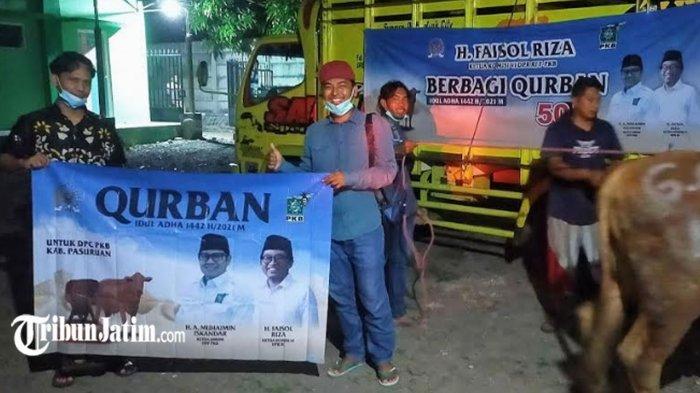 Ketua Komisi VI DPR RI Faisol Riza Salurkan 50 Sapi Kurban untuk Masyarakat Pasuruan-Probolinggo