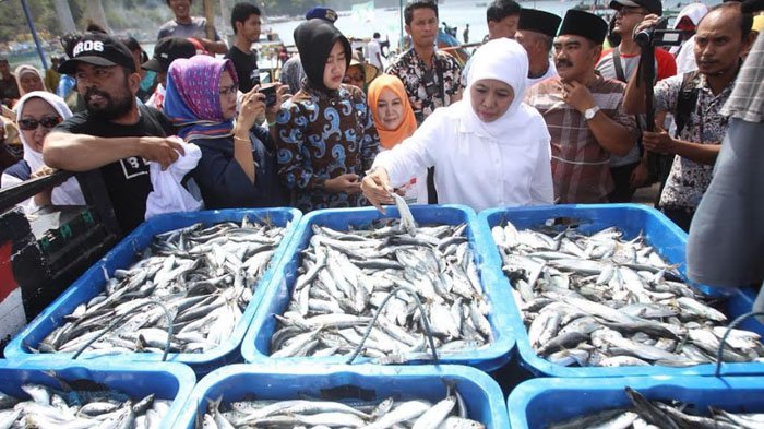 Kagum dengan Potensi Ikan di Sendang Biru Malang, Khofifah Indar Parawansa Inisiasi Produk Olahan