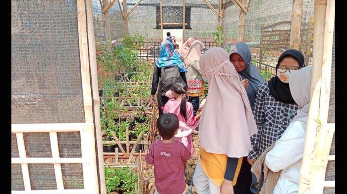 Program Konservasi Toga Sukses di Mojokerto, UNESA Lirik 30 Meter Tanah Tak Terpakai di Sebelahnya