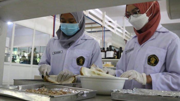 Begini Cara Mahasiswa UB Bikin Krim Anti Jerawat Memanfaatkan Limbah Kulit Durian