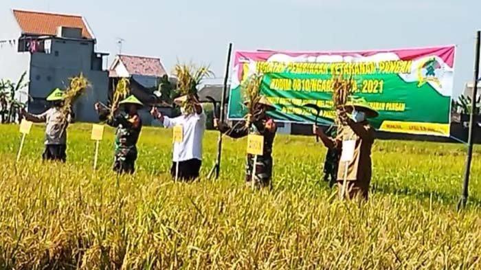 Sediakan Makanan Sehat untuk Masyarakat, Pemkab Nganjuk Dorong Pengembangan Produksi Padi Organik