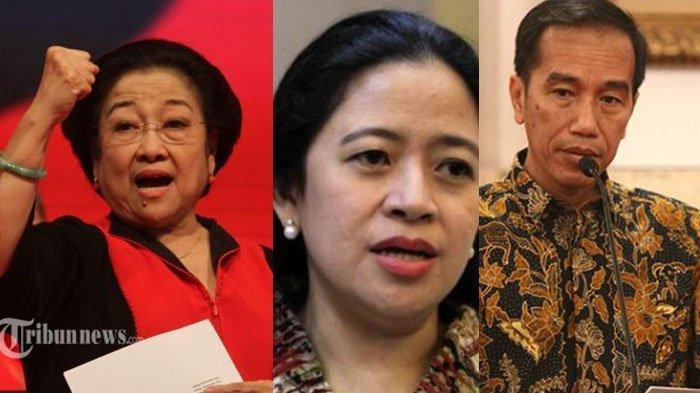Megawati Ingin Pensiun dari Ketum PDIP, Nama Cucu Soekarno & Jokowi Muncul, Siapa Paling Cocok?