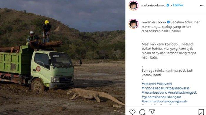 Melanie Subono Kecewa dengan Pembangunan 'Jurassic Park' di Pulau Rinca, Soroti Nasib Komodo