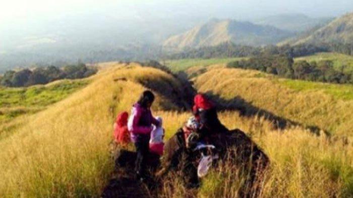 Panduan Lihat Pesona Sunrise diSabana Lincing,Jalur Pendakian Gunung Arjuno via Lawang Malang, Cek