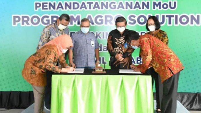 Dongrak Produktivitas Petani Jawa Timur, Petrokimia Gresik MoU Program Agro Solution dengan BRI