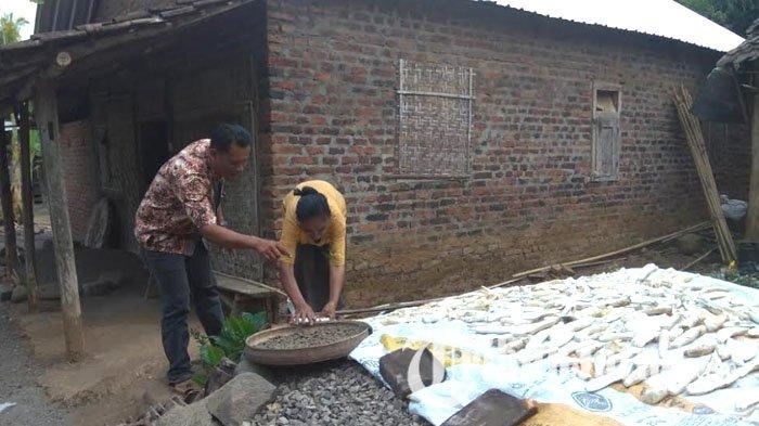 Nasi Tiwul Jadi Menu Kegemaran Warga Lereng Gunung Wilis Kabupaten Kediri