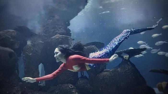 Sosok Nikita Fima, Freediver dan Mermaid Jakarta Aquarium Bersuara Merdu yang Cinta Dunia Bawah Laut