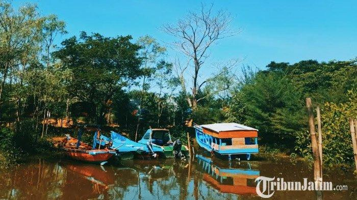 Harga Tiket Masuk Mangrove Wonorejo, Destinasi Ekowisata di Surabaya, Cocok Buat Libur Akhir Tahun