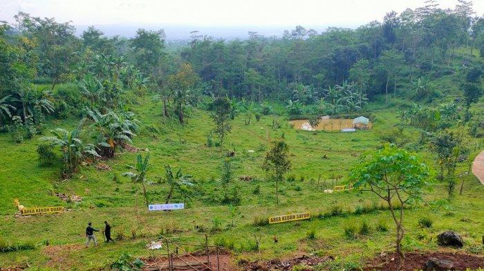 Paiton Energy Kembangkan Pertanian Permaculture, Demi Wujudkan Indonesia Tangguh