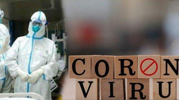 Pandemi virus corona yang membuat beberapa warga menggila