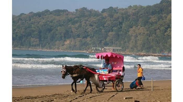 Harga Tiket Masuk, Fasilitas, Lokasi dan Rute Pantai Teleng Ria, Tempat Surfing Terbaik di Pacitan