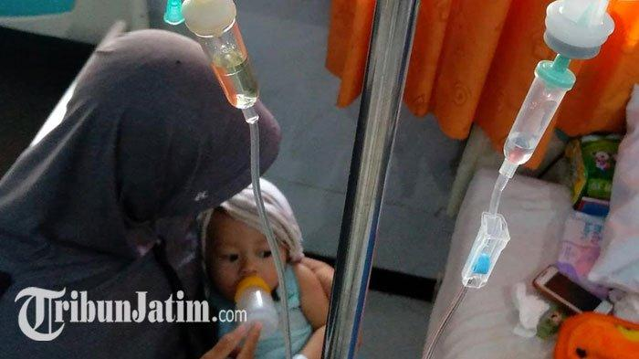 31 Warga Jombang Terserang Demam Berdarah Dengue, Balita 11 Bulan Meninggalsaat Jalani Perawatan