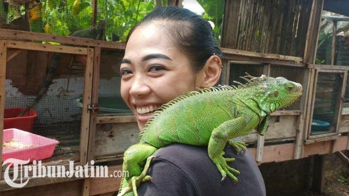 Lihat Cara Ibu 1 Anak di Madiun Geluti Bisnis Reptil, Awalnya Hobi: Masa Covid-19 Malah Order Naik