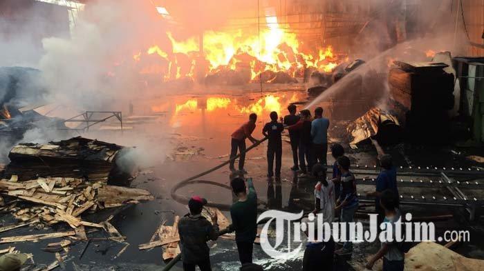 BREAKING NEWS: Pabrik Pengolahan Kayu Sengon Lumajang Terbakar, Petugas Masih Berjibaku Padamkan Api