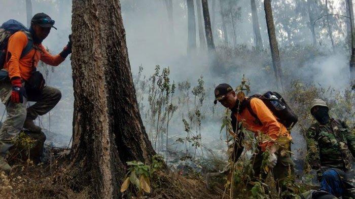 Munculnya Titik Api Baru, BPBD Jatim Gunakan Water Bombing untuk Padamkan Kebakaran Gunung Arjuno