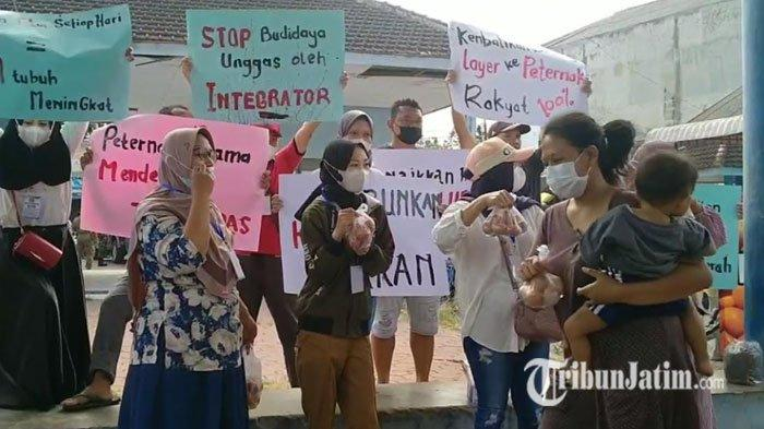 Protes Harga Telur Anjlok, Peternak Layer di Ringinrejo Kediri Bagikan 2,5 Ton Telur Gratis