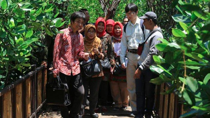 Teliti Ekosistem Mangrove Wonorejo, Pemkot Surabaya Gandeng Tenaga Ahli dari Kitakyusu Jepang