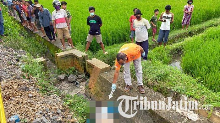 Terungkap Identitas Mayat Laki-laki di Sawah Kediri, Kapolsek Sebut Warga Kabupaten Pasuruan