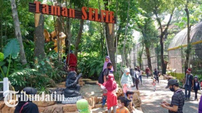 Pengunjung saat menikmati liburan di Kebun Binatang Surabaya.