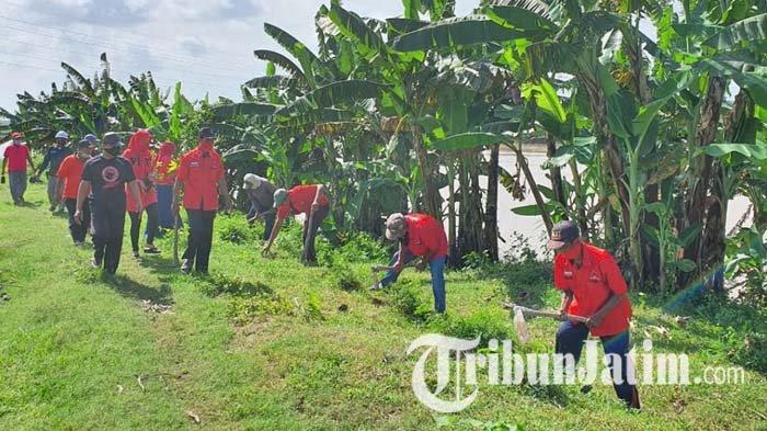 Kader Banteng Tuban Tanam Pohon di Bantaran Bengawan Solo, Sebut Sungai Jalan Peradaban