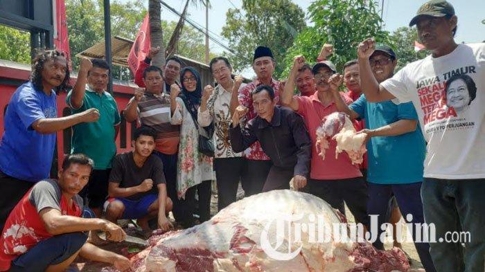 PDIP Tuban Sembelih 2 Ekor Sapi di Hari Raya Idul Adha, Kader Partai Gotong Royong Bagikan ke Warga