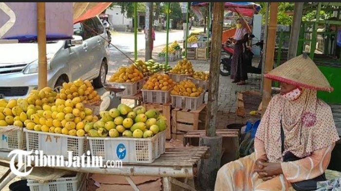 Pedagang Buah Mangga Mulai Menjamur di Kabupaten Kediri, Awal Musim: Ketersediaan Terbatas