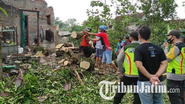 Pohon Tumbang di Kota Blitar Terjadi di Sejumlah Titik, Timpa Rumah Hingga Mobil Warga