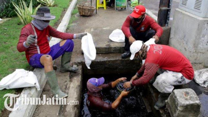 Antisipasi Ditingkatkan, Pemkot Surabaya Gencarkan Pengerukan Saluran Atasi Banjir di Musim Hujan