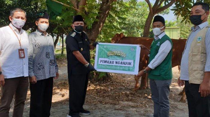 Plt Bupati Nganjuk Serahkan 4 Ekor Sapi Hewan Kurban, Minta Penyembelihan Terapkan Prokes Ketat