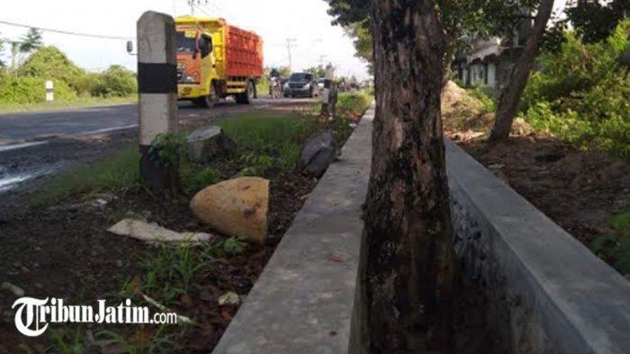 6 Pohon Berdiri di Tengah Saluran Air Kecamatan Sidayu. Warga Bertanya-tanya, 'Jelas Bikin Mampet'