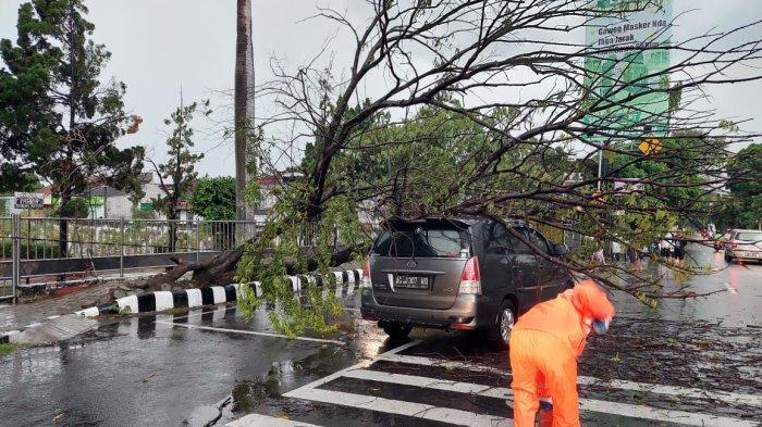 Pohon Tumbang Menimpa Mobil Kijang di Depan TMP Kota Kediri, Simak Kronologi Lengkapnya