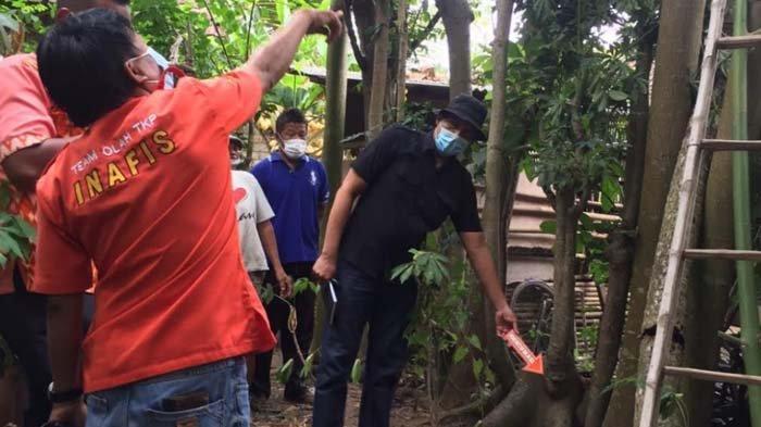 Pria Tulungagung Tewas Tergeletak di Bawah Pohon Randu, Diduga Terjatuh Saat Cari Pakan Kambing