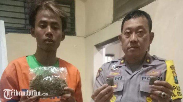 Polisi Gerebek Markas Pengedar Ganja di Sidoarjo, Pelaku Simpan Ganja di Kulkas Sebelum Diedarkan